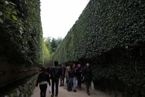 秋の京都旅27