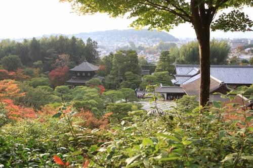 秋の京都旅34