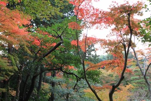 秋の京都旅35