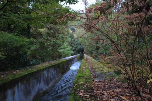 秋の京都旅38