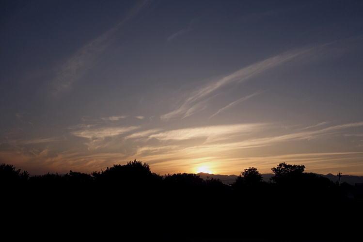 2013-0920-a-00011.jpg