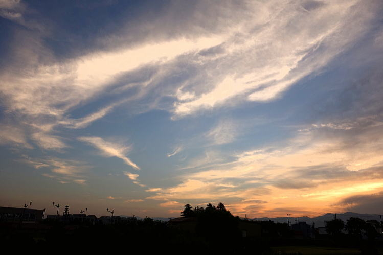 2013-0922-a-00011.jpg