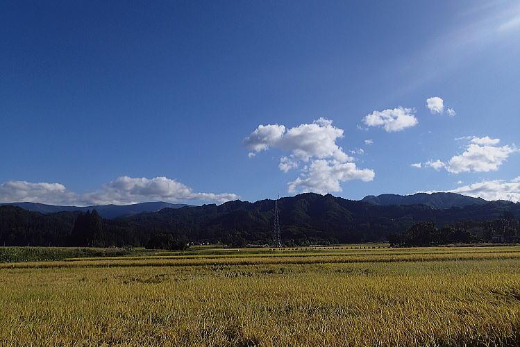 2013-1010-a-00011.jpg