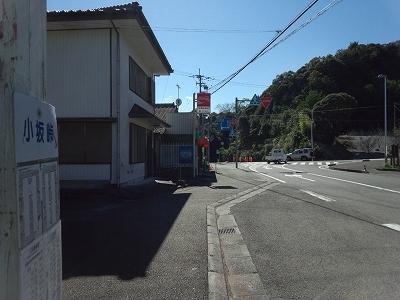 FJ310439.jpg