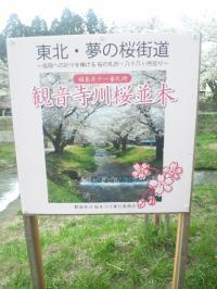 観音寺川9