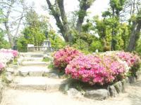 清須城22