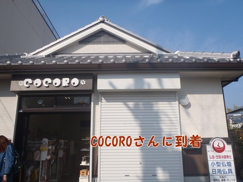 COCORO.jpg