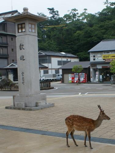 0miyajima (2)