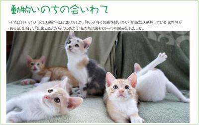 いのちの会_convert_20141207010737
