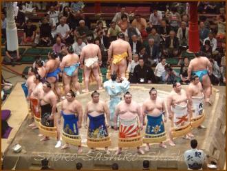 20130523 幕内土俵入り 1 お相撲