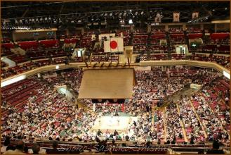 20130523 2階から お相撲