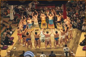 20130523 幕内土俵入り 2 お相撲