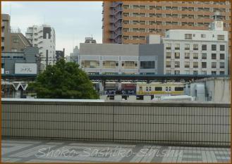20130524 総武線 お相撲