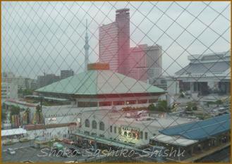 20130524 8階から お相撲
