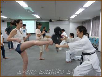 20130621 蹴り 空手