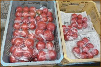 20130713 トマト 八百屋