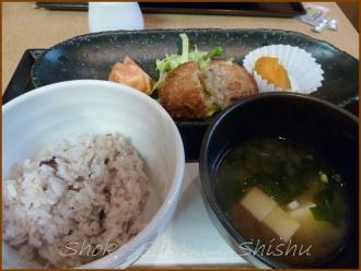 20130724 食事 4 ソラーレ