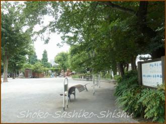 20130817 公園 1 落馬地蔵