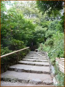 20130924 階段 彼岸花の前