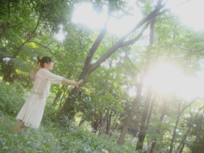 forest_haduki-07z.jpg