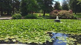英国ヴィクトリア朝ガーデンの湖(イメージ )