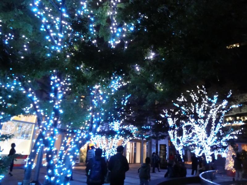 20141130_04.jpg