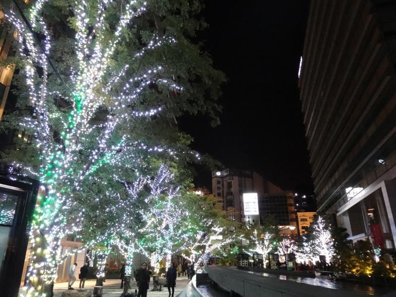 20141130_12.jpg