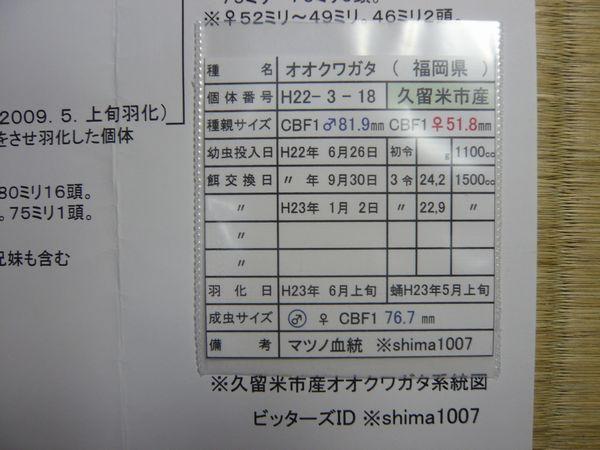♂種親管理表