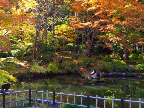 紅葉2014松島円通院12心字の池