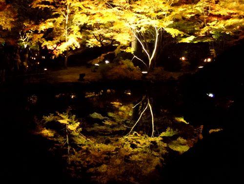 紅葉2014松島円通院27心字の池