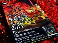 紅葉2014松島円通院28チラシ