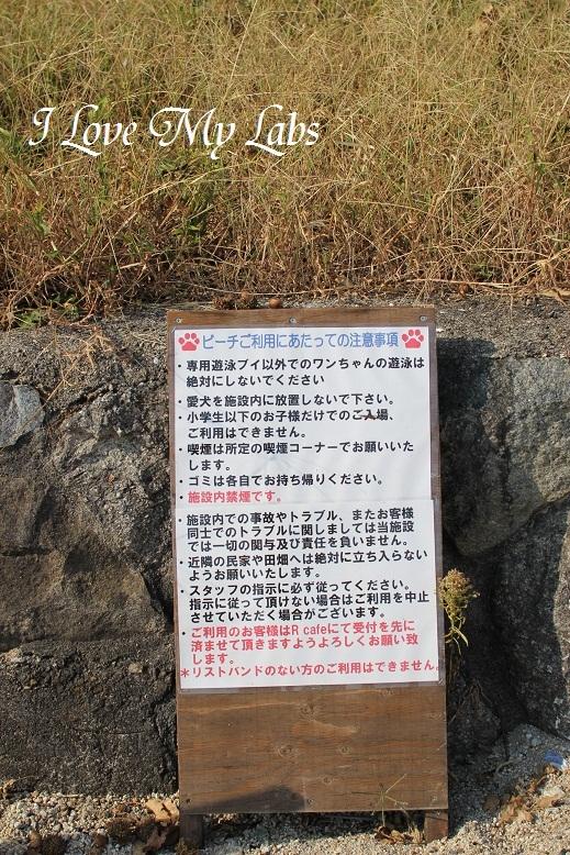 IMG_3612Biwako Oct 2013