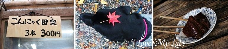 2013IMG_3981雨の紅葉