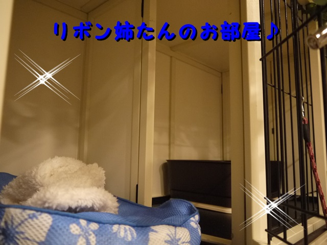 P1030388.jpg