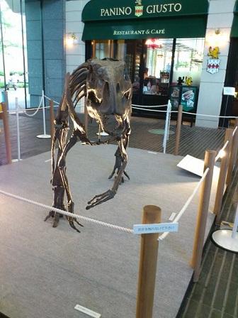 13-08-15-01恐竜