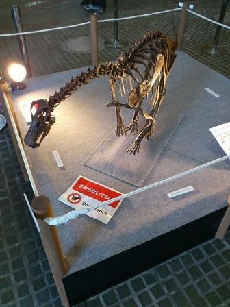 13-08-15-05恐竜