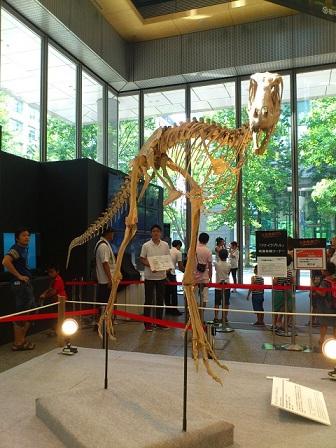 13-08-15-21恐竜