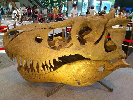 13-08-15-24恐竜