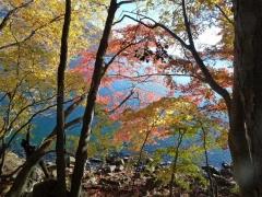 阿世潟周辺の紅葉