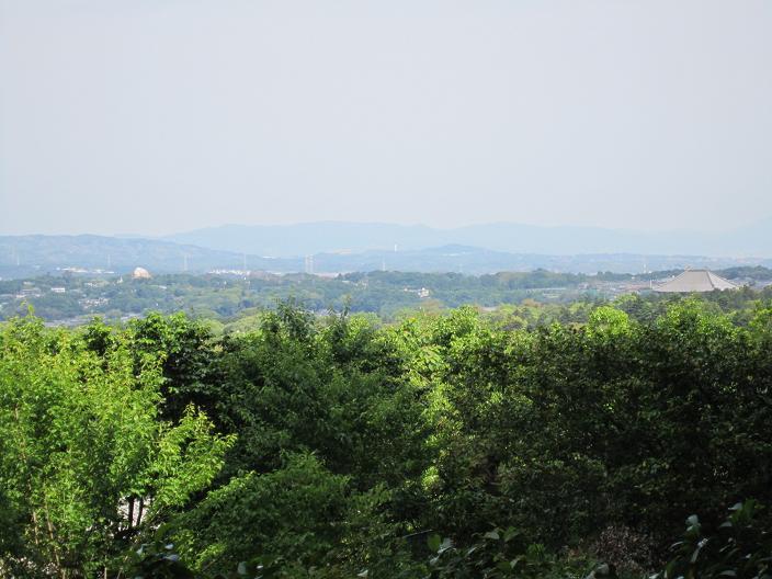 白毫寺から奈良盆地を臨む