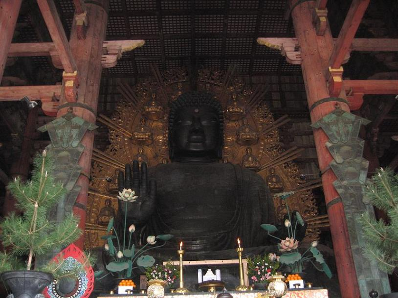 東大寺と郡山城の桜 045