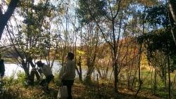 伊丹昆陽池