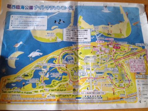 臨海公園ナイトラン