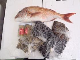 1鮮魚セット20141031