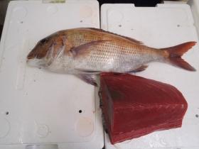 12鮮魚セット2014114