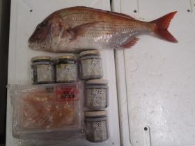 2鮮魚セット20141114
