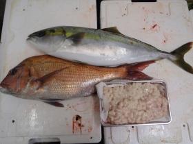 14鮮魚セット20141121