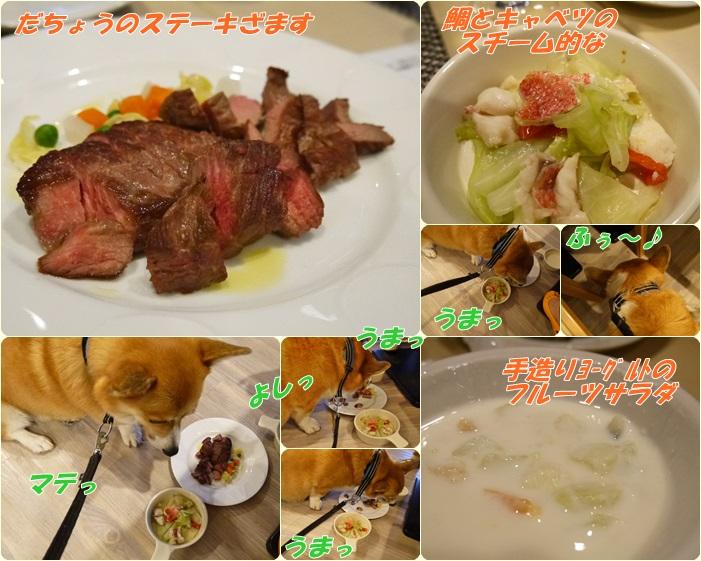 ぽちのディナー