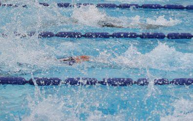 H25BG水泳大会back