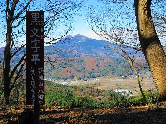山桜の季節に来てみよう、綺麗だと思うよ!